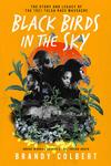Black Birds in the Sky