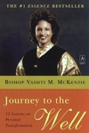 Journey to the Well:12 Lessons on Personal Transformation