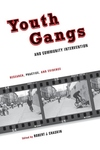 Youth Gangs and Community Intervention:Research, Practice, and Evidence