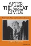 After the Great Divide:Modernism, Mass Culture, Postmodernism
