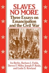 Slaves No More:Three Essays on Emancipation and the Civil War