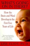 What's Going on in There?:How the Brain and Mind Develop in the First Five Years of Life