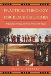 Practical Theology for Black Churches:Bridging Black Theology and African American Folk Religion