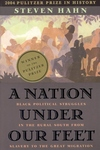 A Nation under Our Feet:Black Political Struggles in the Rural South from Slavery to the Great Migration