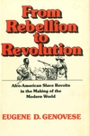 From Rebellion to Revolution:Afro-American Slave Revolts in the Making of the Modern World
