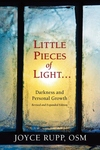 Little Pieces of Light : Darkness and Personal Growth