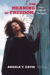 The Meaning of Freedom:And Other Difficult Dialogues