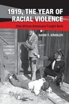 1919, The Year of Racial Violence