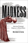 Madness : American Protestant Responses to Mental Illness