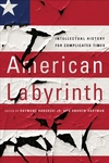 American Labyrinth : Intellectual History for Complicated Times