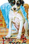 Puppy Dog's ABC Shape Book