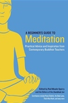 A Beginner's Guide to Meditation:Practical Advice and Inspiration from Contemporary Buddhist Teachers