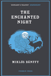 Enchanted Night